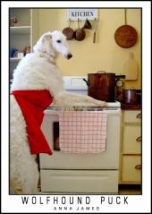 lowolfhound.21155914_std
